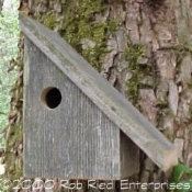 NOOKSACK assembled birdhouse from The Birdhouse Depot.